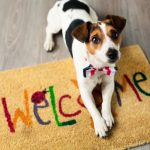 Got Pets? Don't Let Them Scare Away Home Buyers!